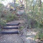Steps below the lower Girrakool picnic area (177564)