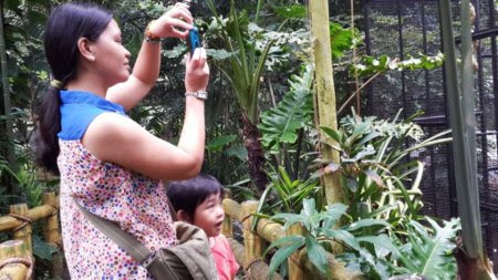 travel, education places for children to visit, fun places for children to visit, zoo