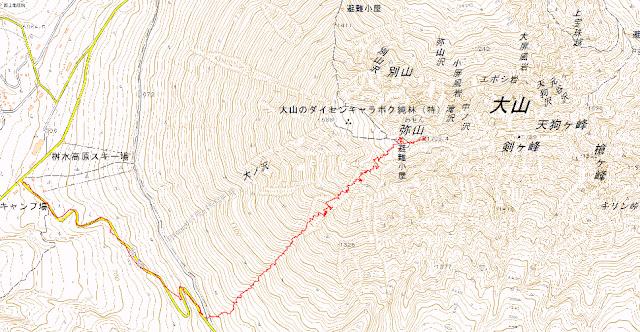 弥山山頂からの滑走トラック