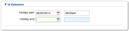 Date time fields in a UI extension