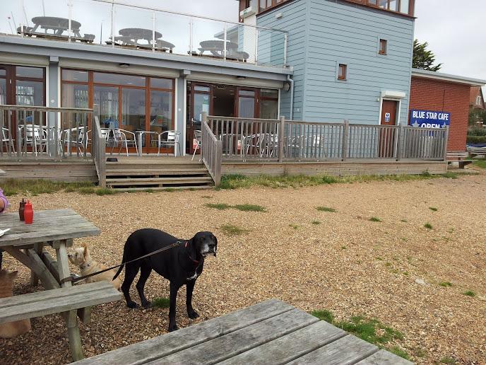 Blue Star Cafe Hamble