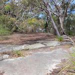 Tumblecowii flat rock clearing (206149)