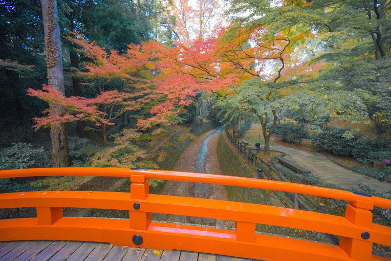 京都 紅葉 北野天満宮 写真3