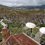 Looking along the board walk from near Main Range Lookout (96790)