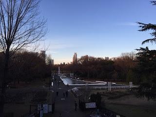 代々木公園の陸橋からの眺め
