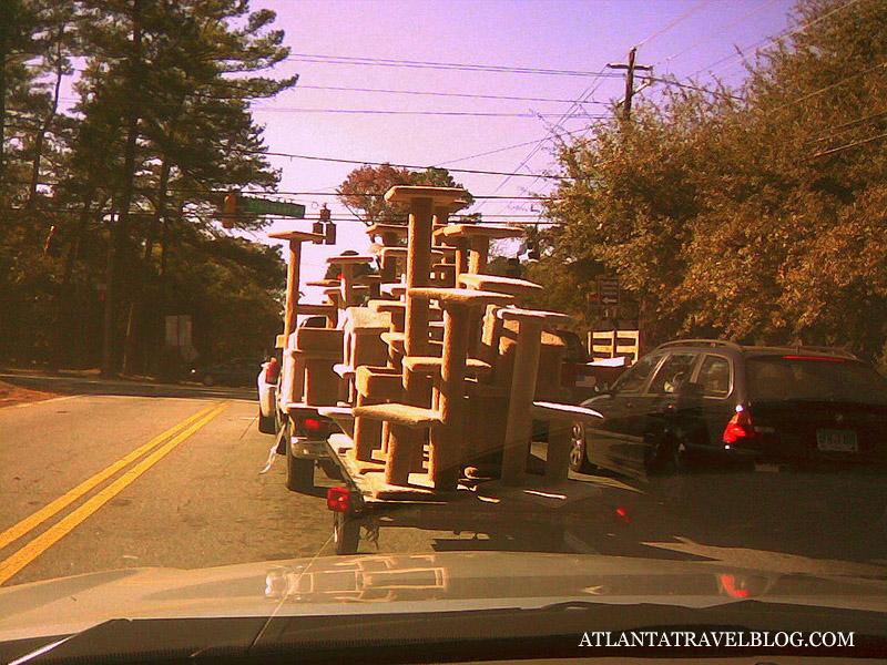 Мобильное фото из Атланты
