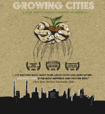 «Растущие города» / Growing cities