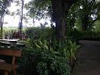 Taradol Restaurant 3