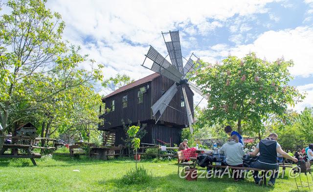 Stella'nın yeşil bahçesi ve rüzgar değirmeni, Polonezköy