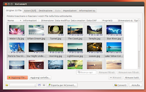 XnConvert in Ubuntu Linux