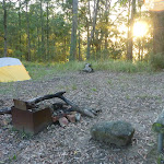 Sunrise at the campsite in Palm Grove NR (369913)