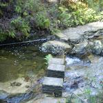 Crossing Lillian's Glen (10220)