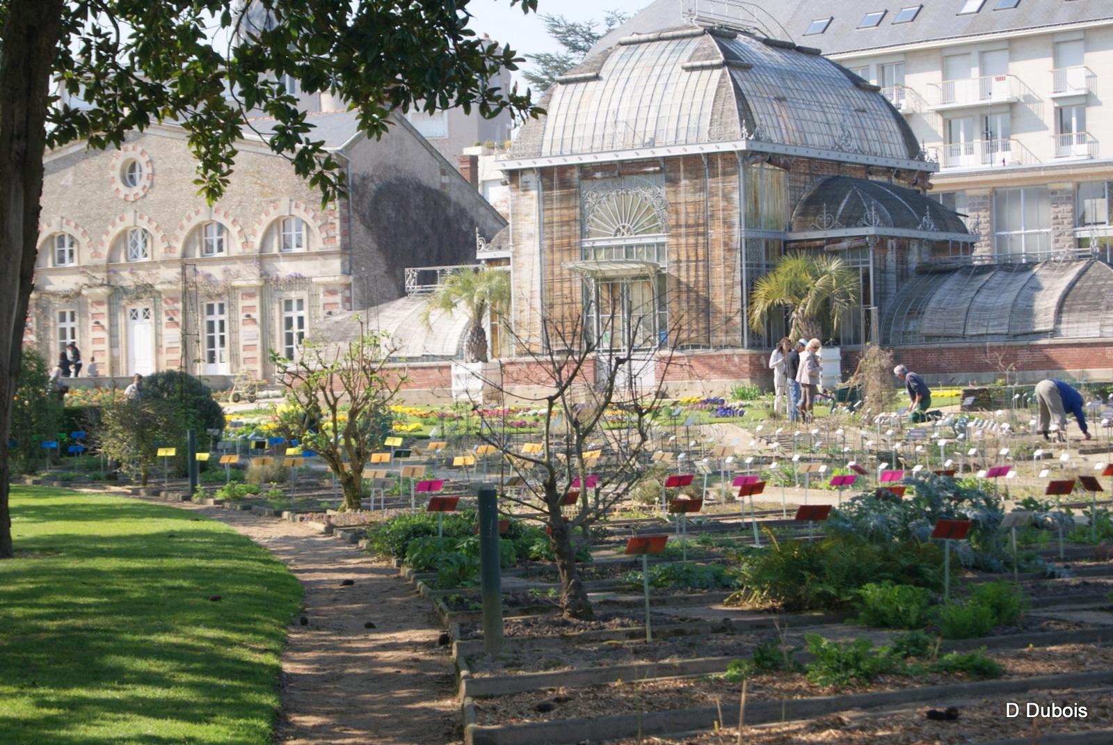 Le jardin des plantes de nantes d tours de france for Le jardin des 5 sens nantes