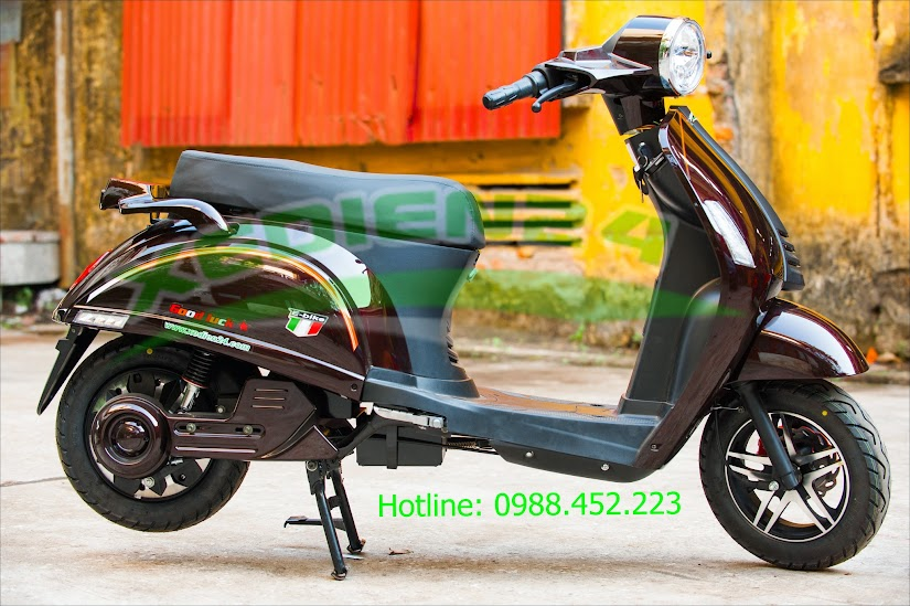 xe máy điện goodluck ely