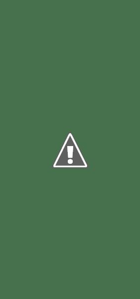 Обзор навигаторов. Туристический навигатор Garmin GPSMAP 76 отзывы.