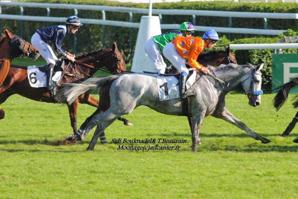 Photos Auteuil 18-10-2014 IMG_5035