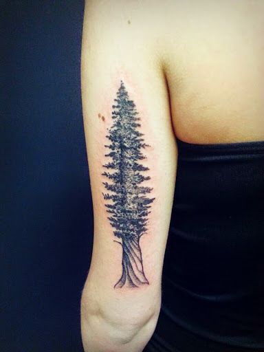 58 Coolest Tree Tattoos Designs And Ideas