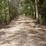 Kangaroo Point Road (364259)