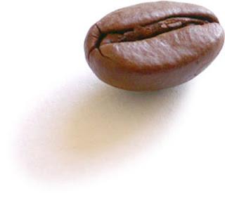 organic coffee Nicaragua