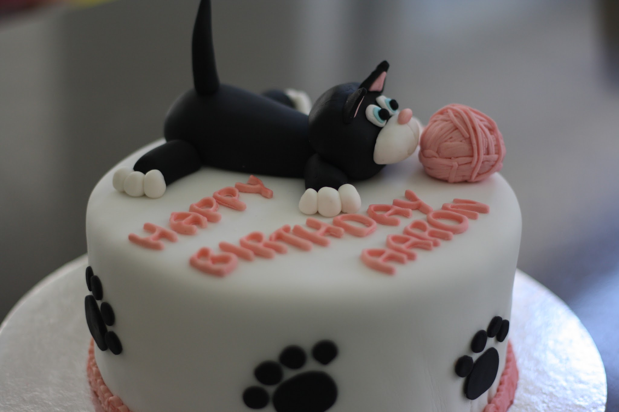 Scrummy Yummy Mummy Bailey The Cat Cake