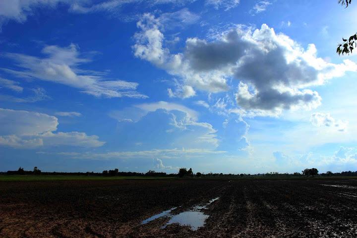 ดินแดนทุ่งกุลาร้องไห้ ในฤดูฝน แถวจังหวัดร้อยเอ็ด