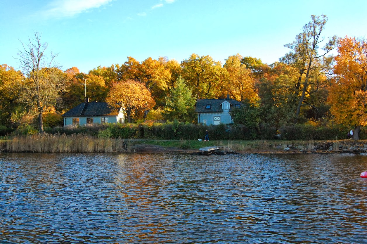 Blues houses on the water amid fall foliage