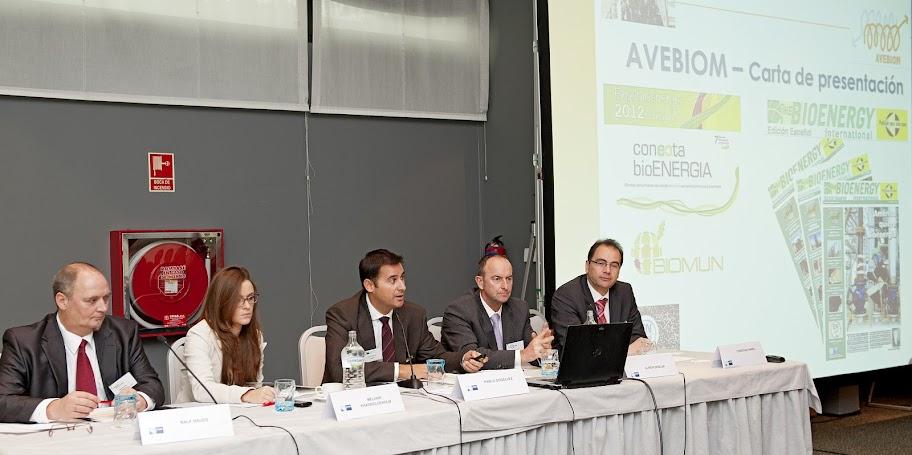 Pablo Gosalvez AVEBIOM en V Jornada hispano alemana de bioenergia