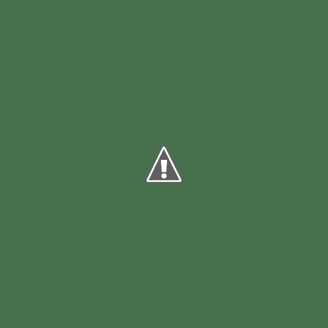 Podcast: Iniciativa de reforma a la ley del IMSS