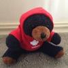 CanadaBear