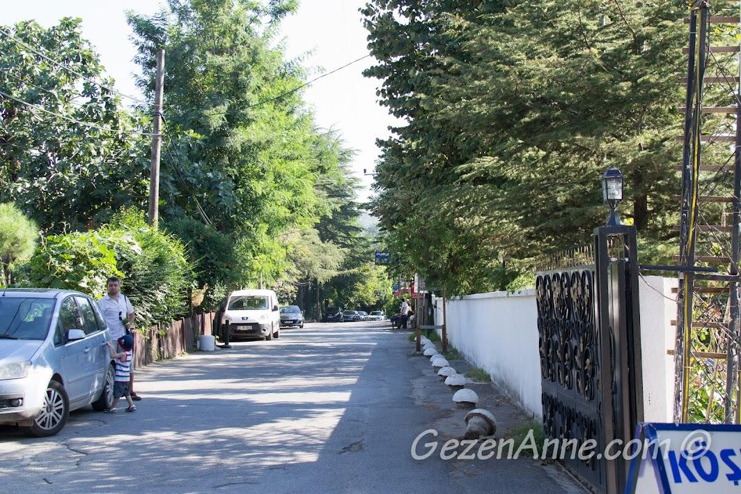 Polonezköy ana caddede