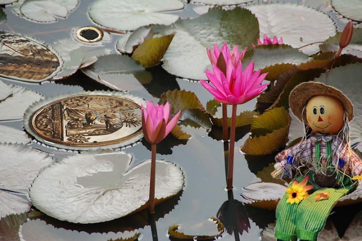 Forum photo et montage photo - forum Jmlyon%2520montage%2520juillet%2520ao%25C3%25BBt%25206