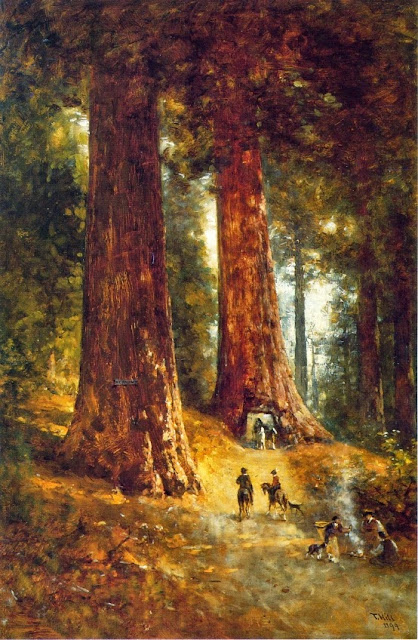 Thomas Hill - In the Redwoods