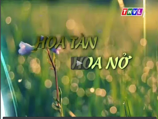 Hoa Tàn Hoa Nở - THVL2