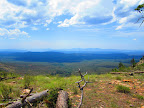 A view from the Mogollon Rim on Section 25 (Photo by J. Davis)