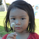 LePort Montessori Preschool Toddler Program Irvine San Marino - girl on the playground