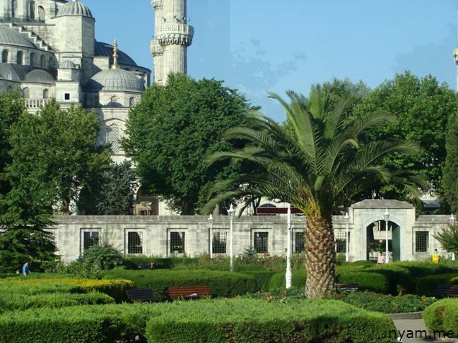 голубая мечеть в стамбуле (2)