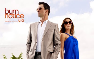 Burn Notice Burn Notice 5ª Temporada Legendado RMVB + AVI