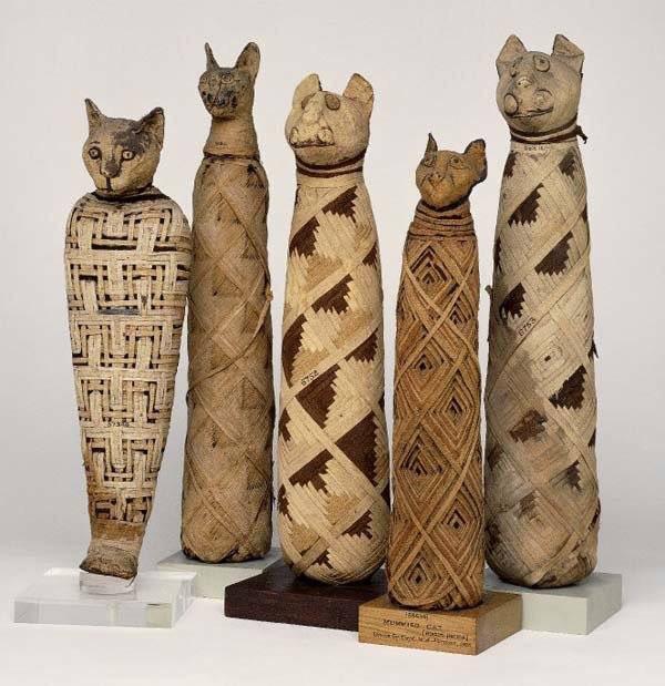 Người Ai Cập cổ đại còn ướp xác và chôn cất mèo chết tại một nghĩa trang.