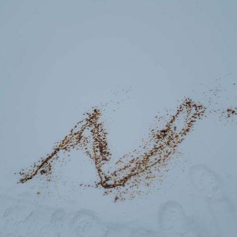 Naim Taha