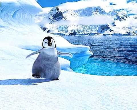 ペンギンがツイート