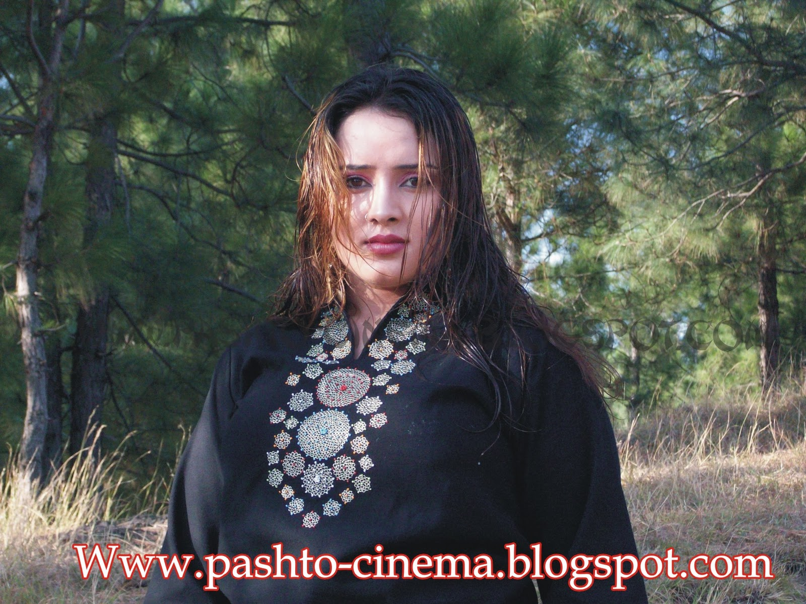 Nadia Gul Six: Pashto Songs: Polly Wood