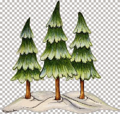 h@nne_trees.jpg