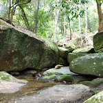 A rocky creek soon to flow into Cowan Creek (420553)