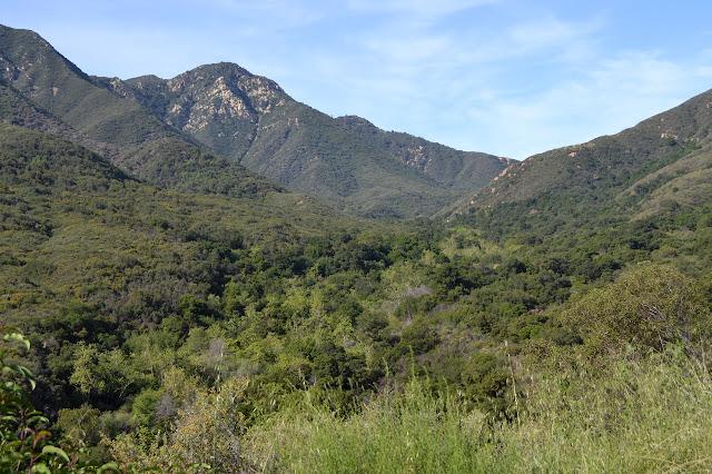 rocky peak along the ridge