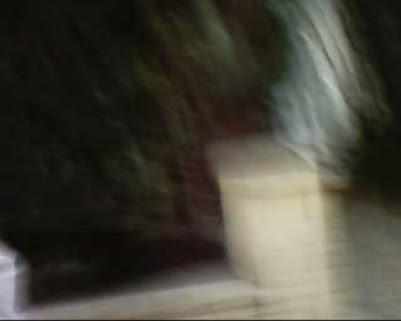 Kampfsportclub 2003 Bushido Freckenfeld e.V., Mieter-Vereine Freckenfeld, Grundschule Freckenfeld, Kindergarten Freckenfeld, Schule Freckenfeld, Kirchengemeinde Freckenfeld, Bürgermeisterin Freckenfeld, Heizöl Freckenfeld, Sanitär Freckenfeld, Gesangverein Freckenfeld, Lyra Gesangverein Freckenfeld, Gästehaus Freckenfeld, TSV 1908 Freckenfeld