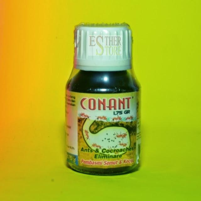 obat basmi semut kecoa
