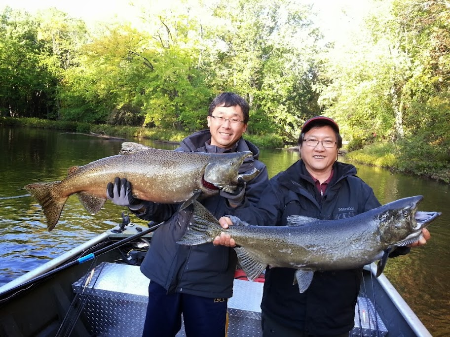 Pere Marquette River King Salmon