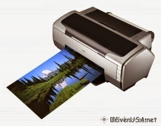 download Epson Stylus R1800 printer's driver