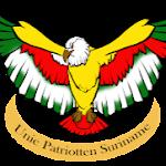 Google+ Hangouts organized by Unie Patriotten Suriname