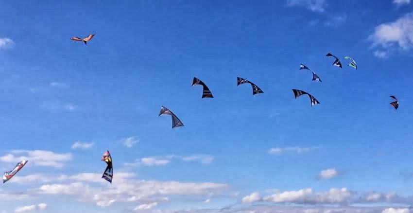 10-kite%2520group%2520fly%2527.JPG